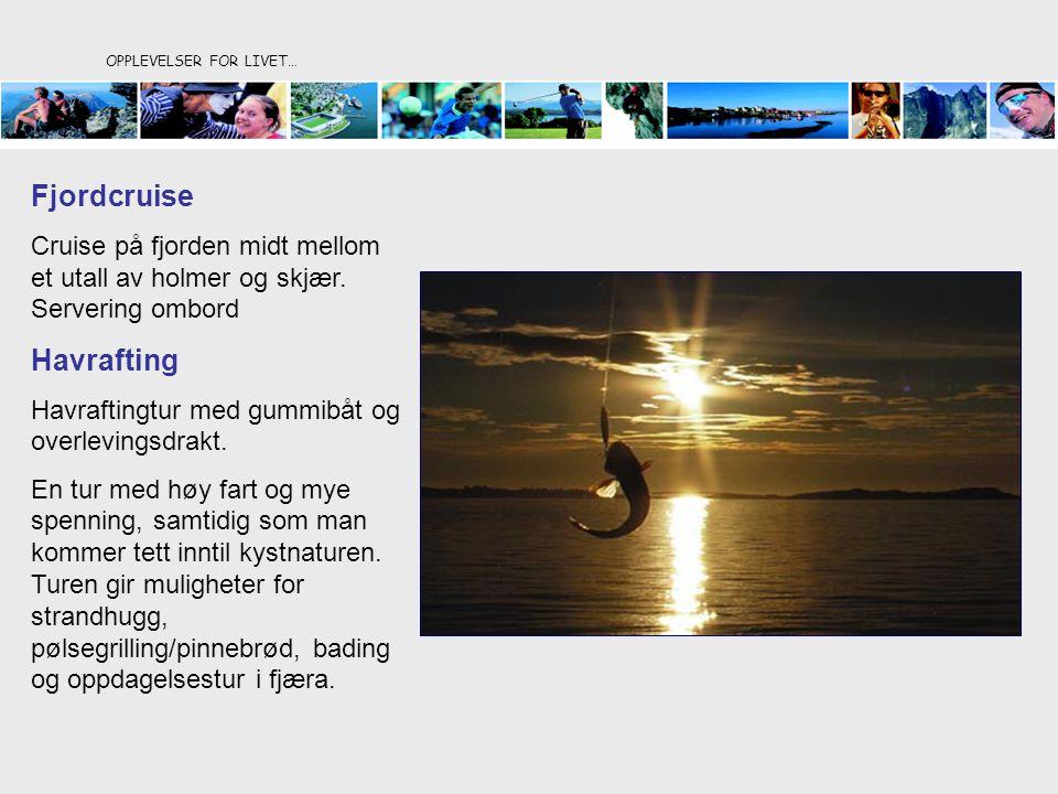 OPPLEVELSER FOR LIVET… Fjordcruise Cruise på fjorden midt mellom et utall av holmer og skjær. Servering ombord Havrafting Havraftingtur med gummibåt o