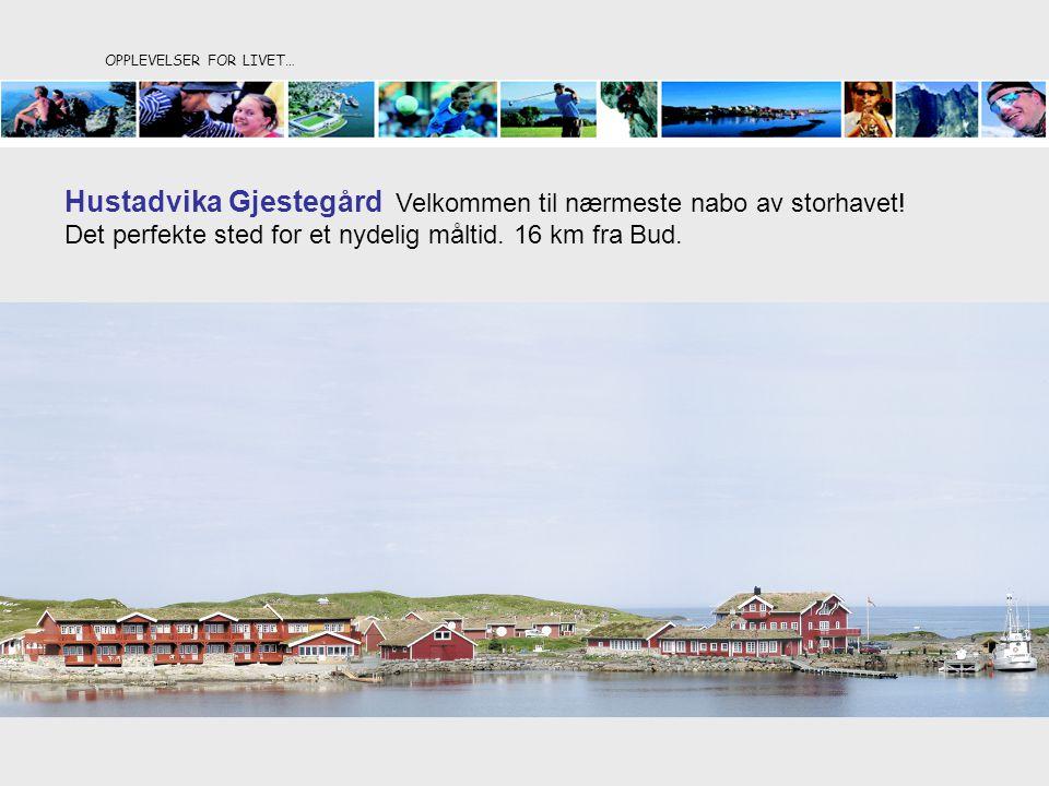 OPPLEVELSER FOR LIVET… Hustadvika Gjestegård Velkommen til nærmeste nabo av storhavet! Det perfekte sted for et nydelig måltid. 16 km fra Bud.