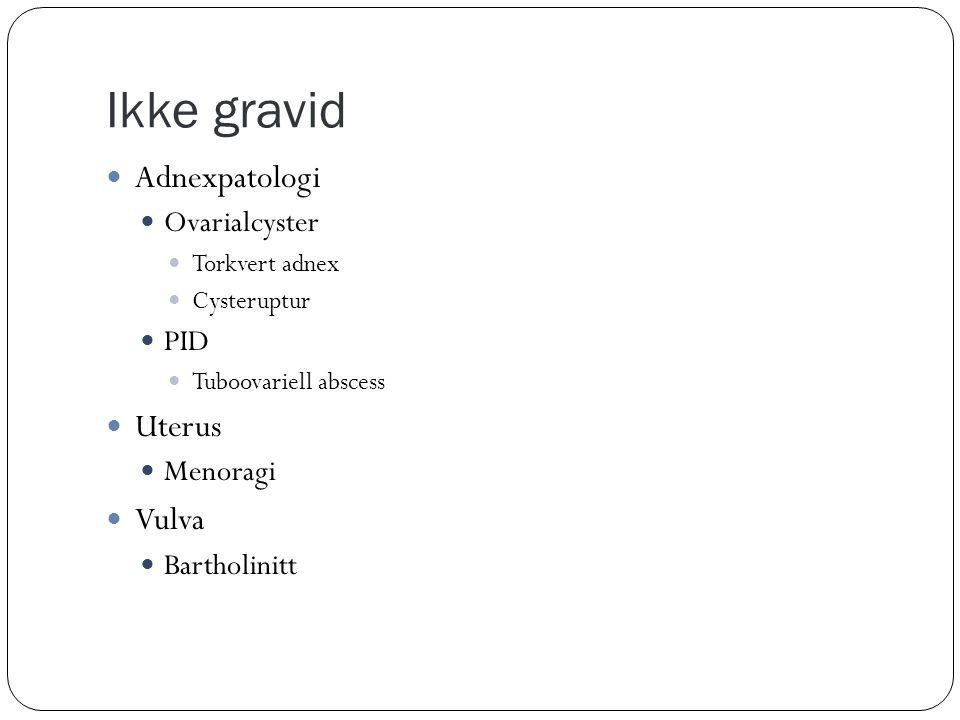 Ikke gravid  Adnexpatologi  Ovarialcyster  Torkvert adnex  Cysteruptur  PID  Tuboovariell abscess  Uterus  Menoragi  Vulva  Bartholinitt