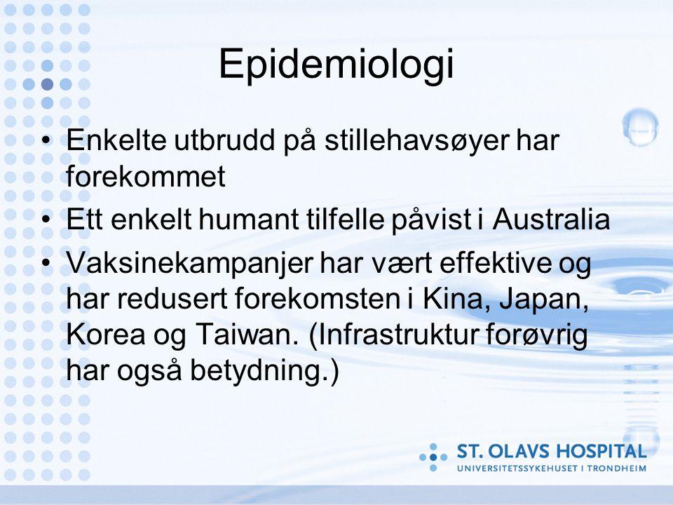 Epidemiologi •Enkelte utbrudd på stillehavsøyer har forekommet •Ett enkelt humant tilfelle påvist i Australia •Vaksinekampanjer har vært effektive og har redusert forekomsten i Kina, Japan, Korea og Taiwan.