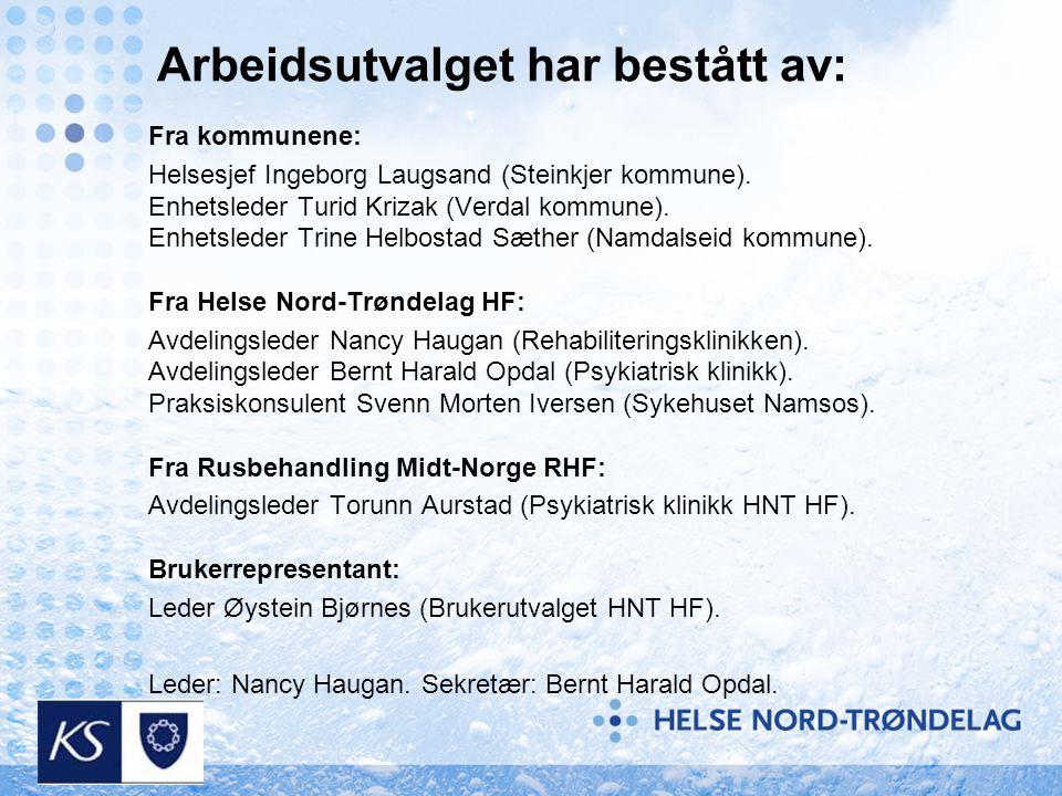 Arbeidsutvalget har bestått av: Fra kommunene: Helsesjef Ingeborg Laugsand (Steinkjer kommune). Enhetsleder Turid Krizak (Verdal kommune). Enhetsleder