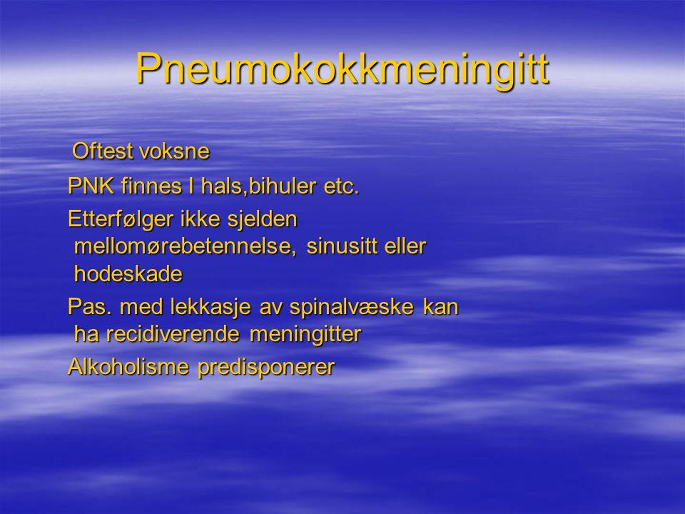Pneumokokkmeningitt Oftest voksne Oftest voksne PNK finnes I hals,bihuler etc. PNK finnes I hals,bihuler etc. Etterfølger ikke sjelden mellomørebetenn