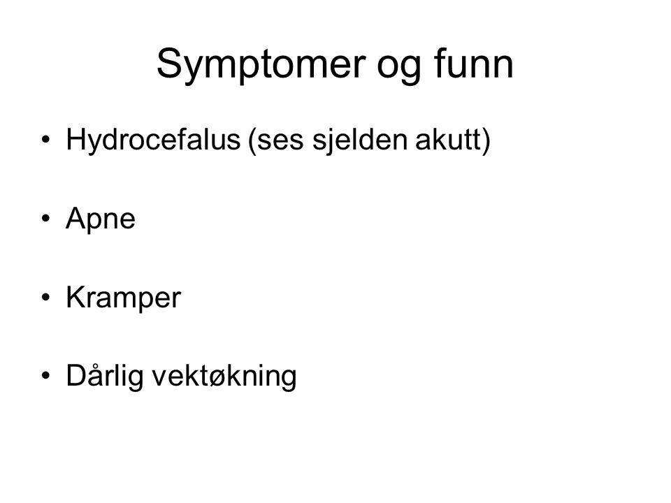 Symptomer og funn •Hydrocefalus (ses sjelden akutt) •Apne •Kramper •Dårlig vektøkning