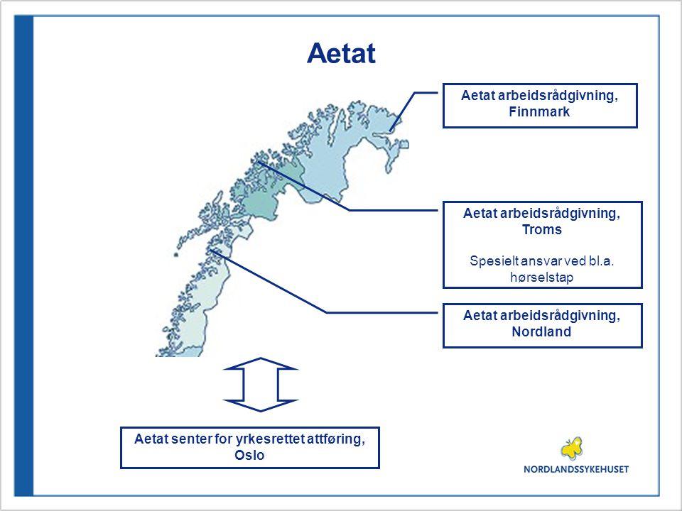 Aetat Aetat arbeidsrådgivning, Troms Spesielt ansvar ved bl.a.