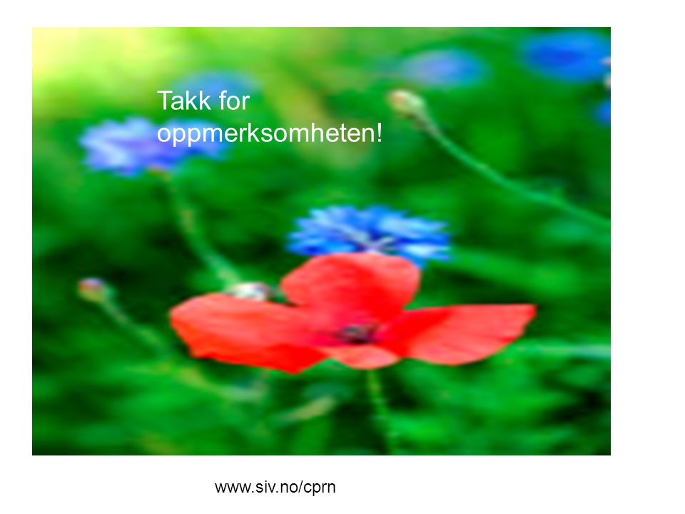 Takk for oppmerksomheten! www.siv.no/cprn