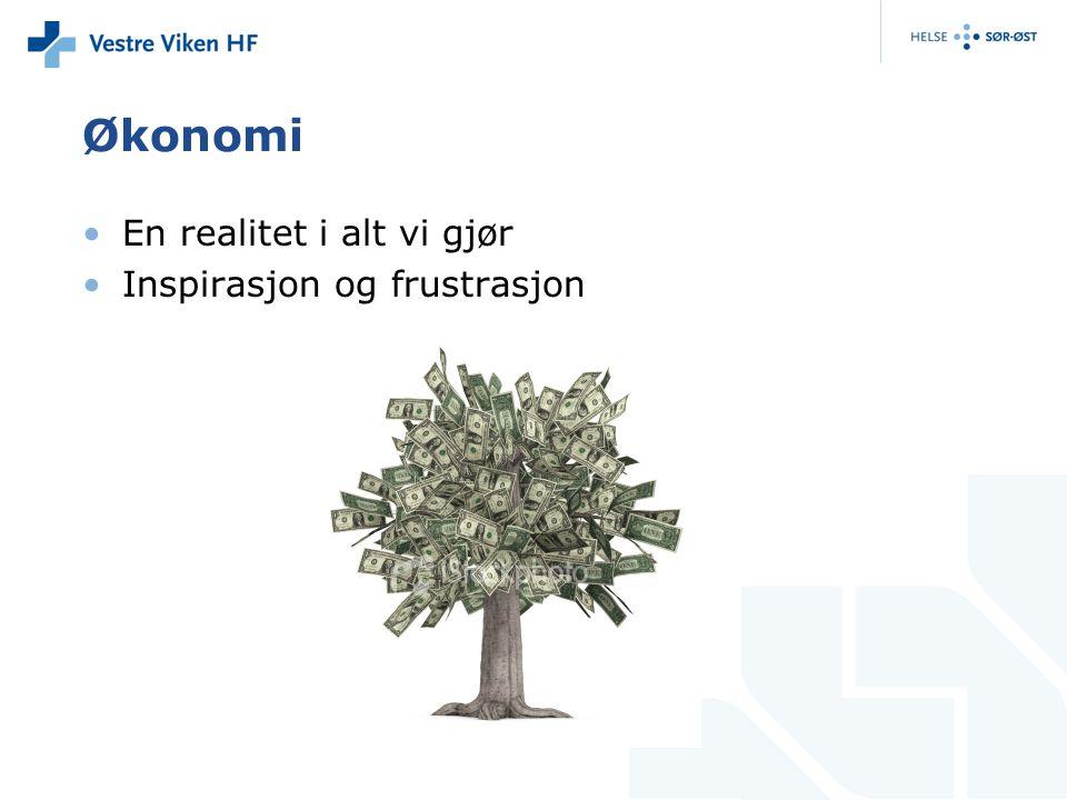 Økonomi •En realitet i alt vi gjør •Inspirasjon og frustrasjon