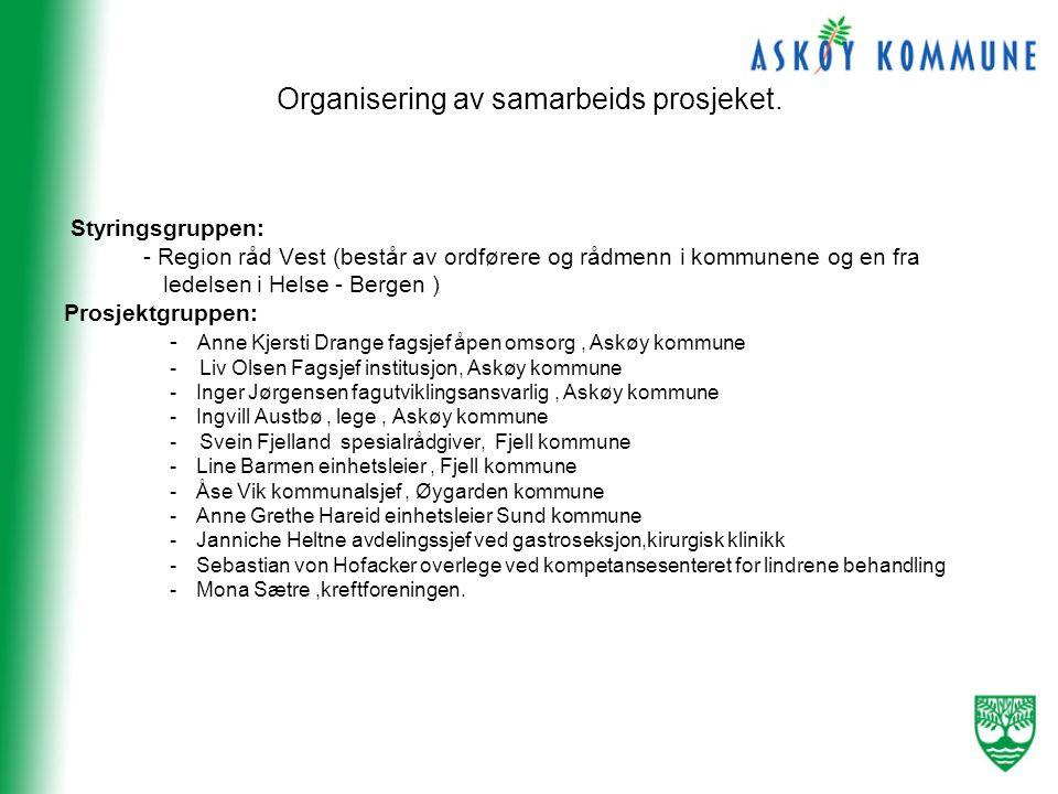 Organisering av samarbeids prosjeket.
