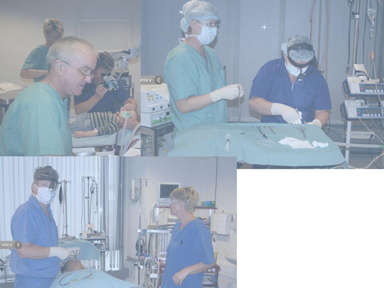 Rhinologiske inngrep • Septumplastikk • Conchareduksjoner • Endoskopisk bihulekirurgi