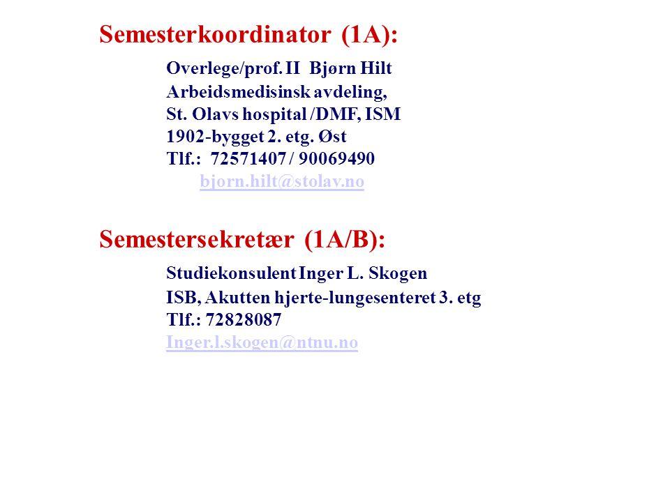 Semesterkoordinator (1A): Overlege/prof.II Bjørn Hilt Arbeidsmedisinsk avdeling, St.