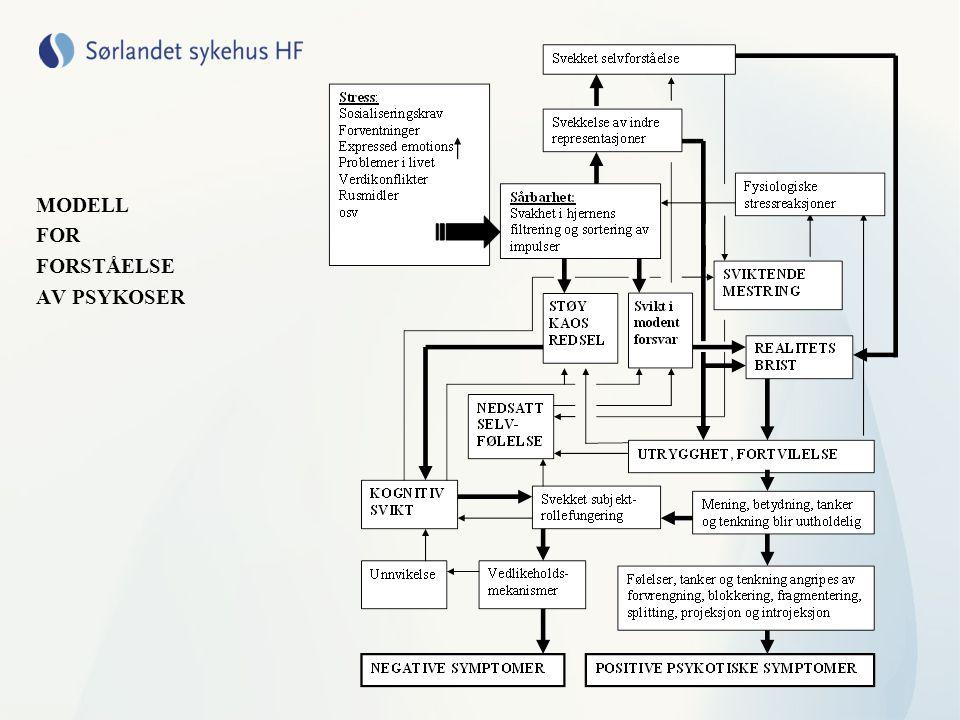 Noen elementer i behandlingen •Bekreftelse, anerkjennelse og akkomodasjon (Kierkegaard) •Beskyttelse, støtte og struktur •Trygghet og relasjon •Medisinering •Aktivisering