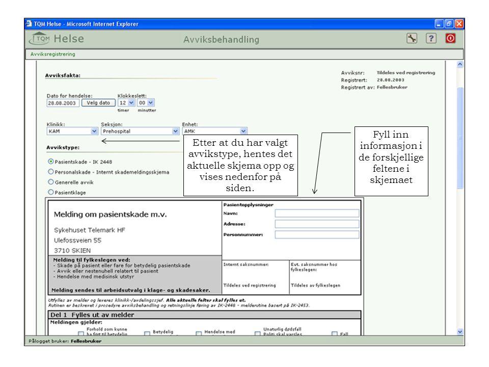 Etter at du har valgt avvikstype, hentes det aktuelle skjema opp og vises nedenfor på siden. Fyll inn informasjon i de forskjellige feltene i skjemaet
