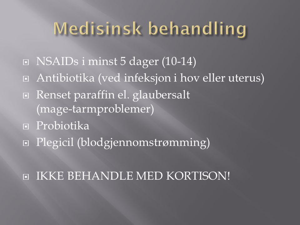  NSAIDs i minst 5 dager (10-14)  Antibiotika (ved infeksjon i hov eller uterus)  Renset paraffin el. glaubersalt (mage-tarmproblemer)  Probiotika
