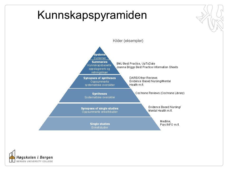 Kunnskapspyramiden