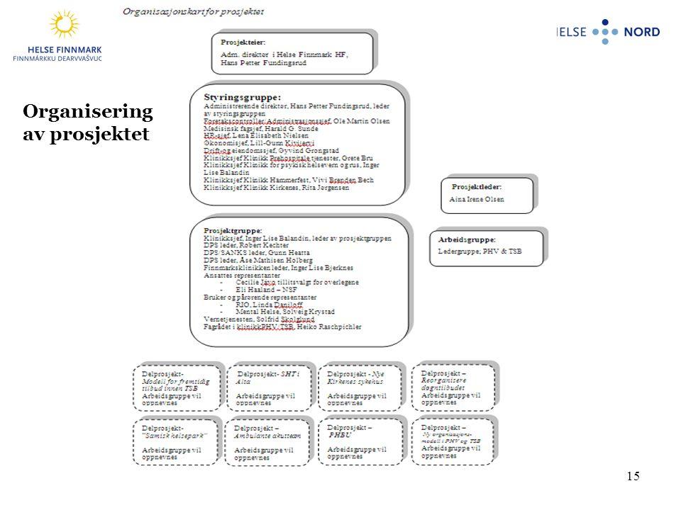 15 Organisering av prosjektet