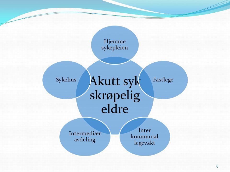 6 Hjemme sykepleien Fastlege Inter kommunal legevakt Intermediær avdeling Sykehus