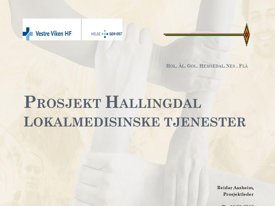 H OL, Å L, G OL, N ES, F LÅ, H EMSEDAL Regionrådet – Kommunene har vedtatt etter forslag fra regionrådet en intensjonsavtale om videreføring av prosjektet -mai-2012.