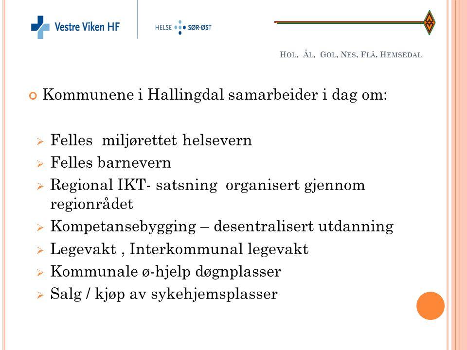 H OL, Å L, G OL, N ES, F LÅ, H EMSEDAL Kommunene i Hallingdal samarbeider i dag om:  Felles miljørettet helsevern  Felles barnevern  Regional IKT-