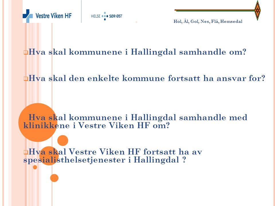  Hol, Ål, Gol, Nes, Flå, Hemsedal  Hva skal kommunene i Hallingdal samhandle om?  Hva skal den enkelte kommune fortsatt ha ansvar for?  Hva skal k