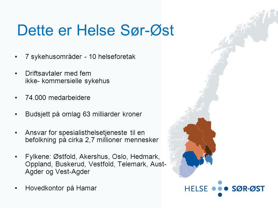 10 helseforetak i regionen Helse Sør-Øst RHF eier 10 underliggende datterselskap – helseforetak.