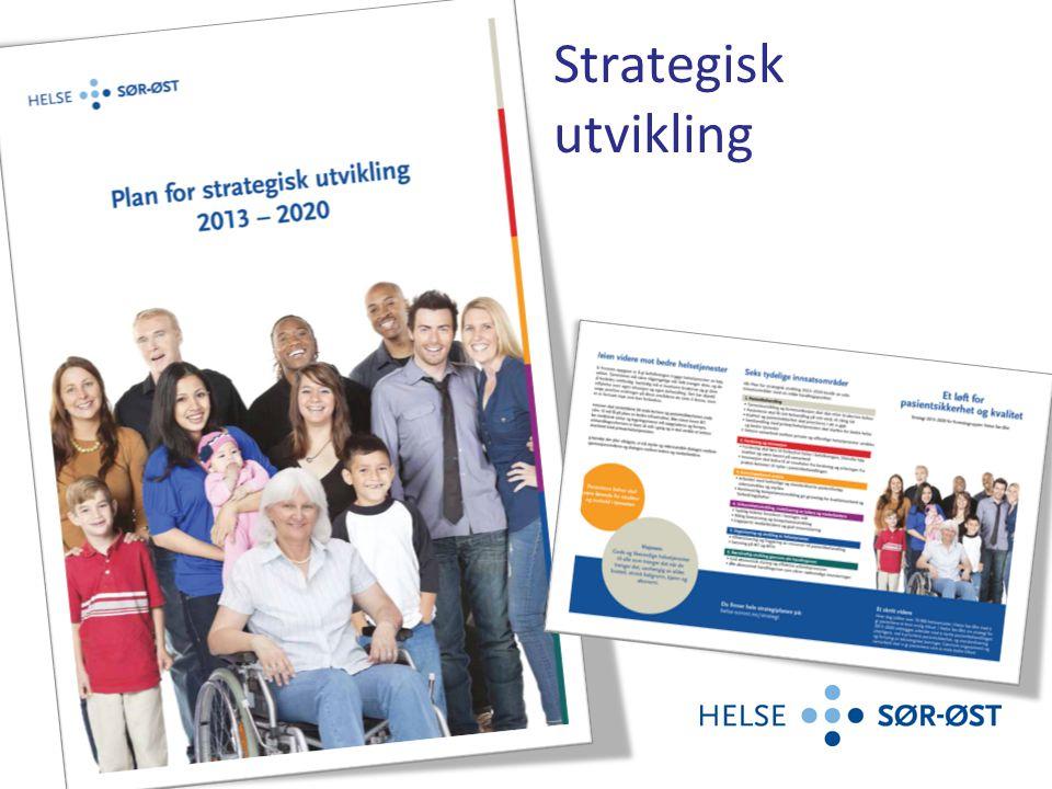 I Helse Sør-Øst`s strategiplan for 2013-2020 er hovedfokus kvalitet, kompetanse og ledelse.