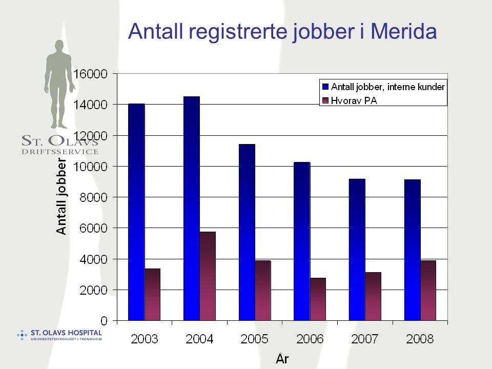 Antall registrerte jobber i Merida