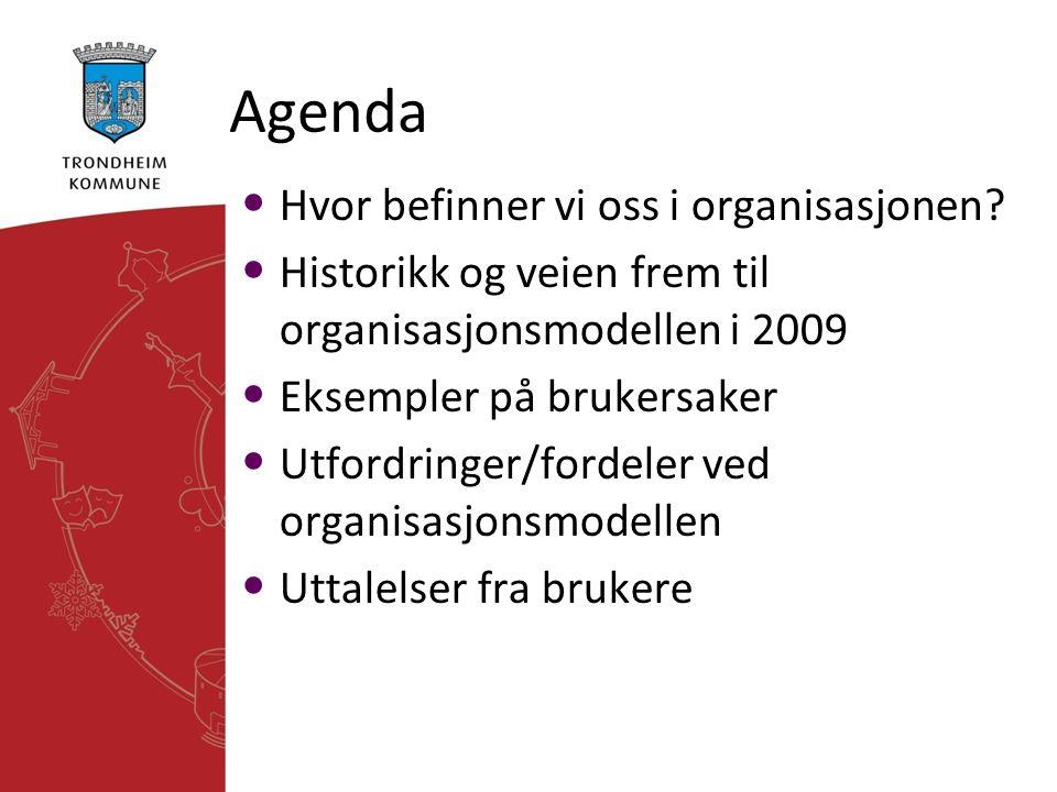 Agenda • Hvor befinner vi oss i organisasjonen? • Historikk og veien frem til organisasjonsmodellen i 2009 • Eksempler på brukersaker • Utfordringer/f