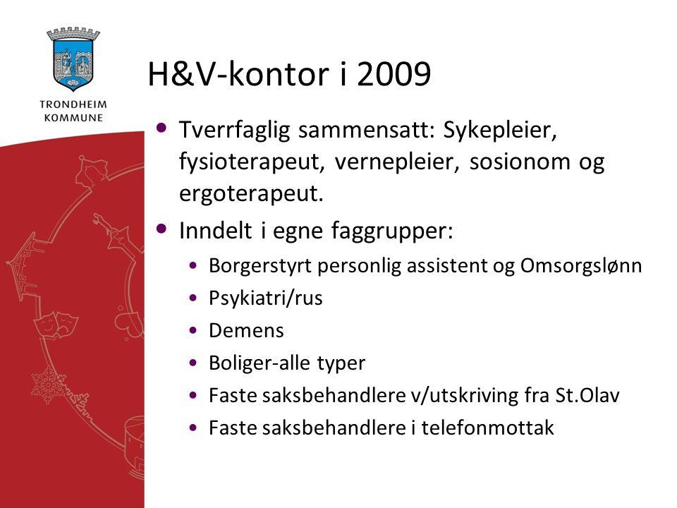 H&V-kontor i 2009 • Tverrfaglig sammensatt: Sykepleier, fysioterapeut, vernepleier, sosionom og ergoterapeut. • Inndelt i egne faggrupper: •Borgerstyr