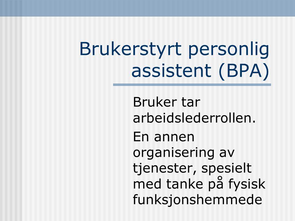 Brukerstyrt personlig assistent (BPA) Bruker tar arbeidslederrollen. En annen organisering av tjenester, spesielt med tanke på fysisk funksjonshemmede