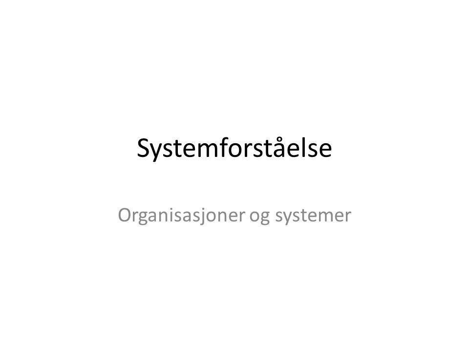 Systemforståelse Organisasjoner og systemer
