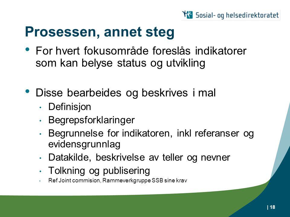 | 18 Prosessen, annet steg • For hvert fokusområde foreslås indikatorer som kan belyse status og utvikling • Disse bearbeides og beskrives i mal • Def