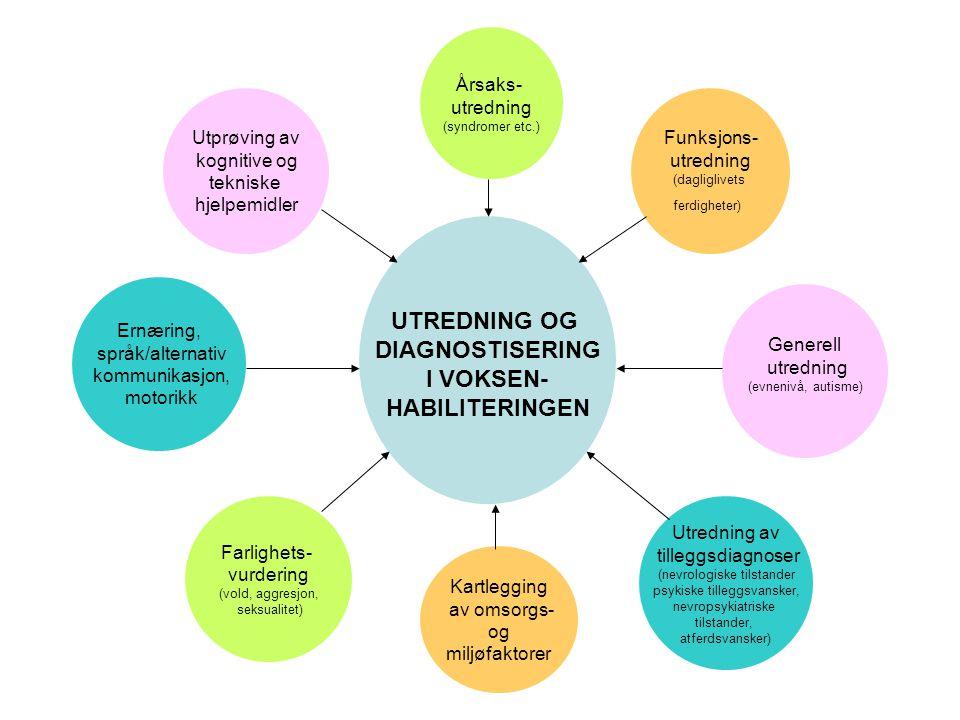 UTREDNING OG DIAGNOSTISERING I VOKSEN- HABILITERINGEN Årsaks- utredning (syndromer etc.) Generell utredning (evnenivå, autisme) Kartlegging av omsorgs