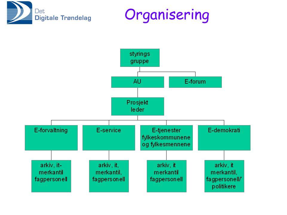 Organisering
