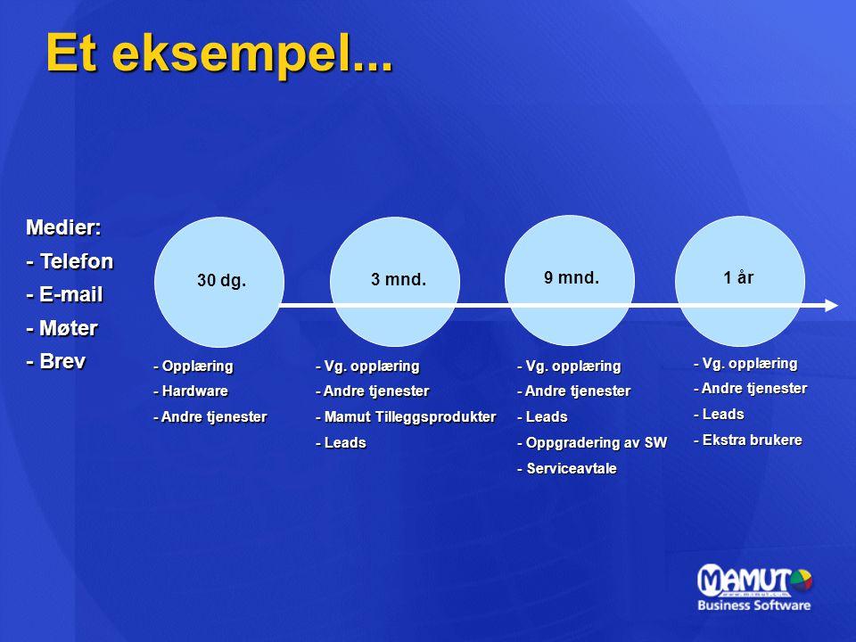 Et eksempel... 30 dg. 1 år 9 mnd. 3 mnd. - Opplæring - Hardware - Andre tjenester - Vg. opplæring - Andre tjenester - Mamut Tilleggsprodukter - Leads