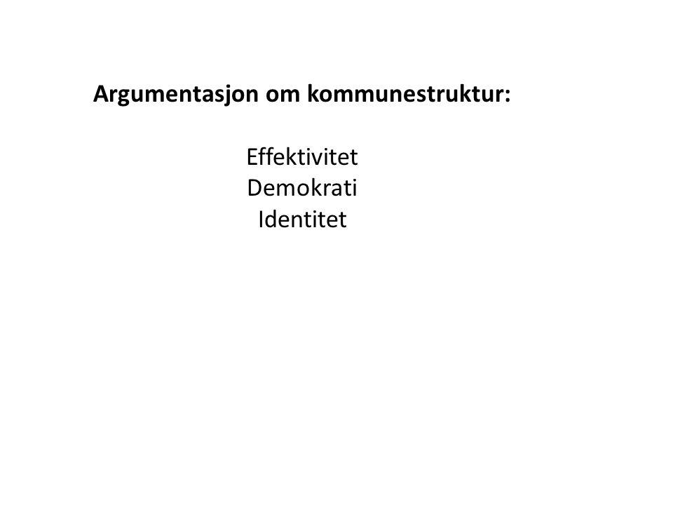 Argumentasjon om kommunestruktur: Effektivitet Demokrati Identitet