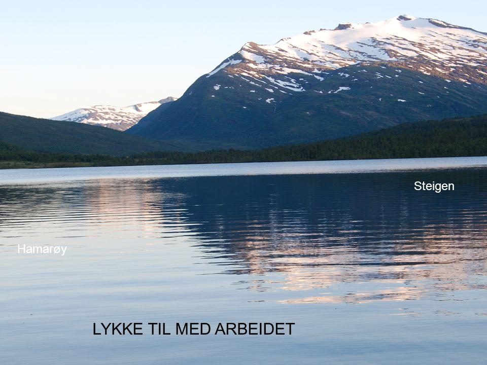 LYKKE TIL MED ARBEIDET Hamarøy Steigen