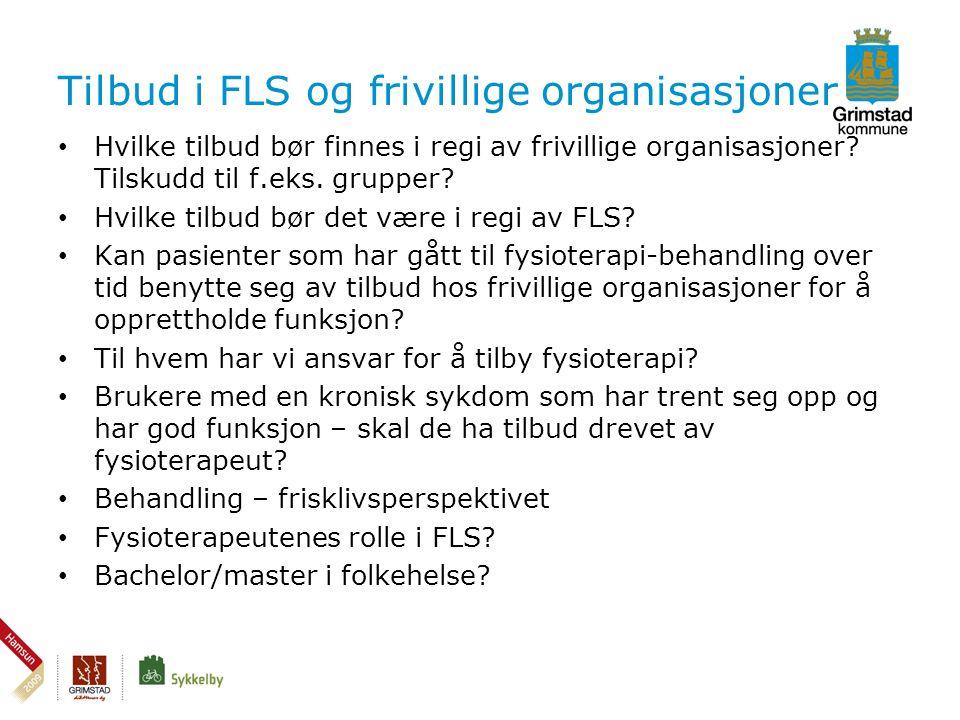 Tilbud i FLS og frivillige organisasjoner • Hvilke tilbud bør finnes i regi av frivillige organisasjoner.