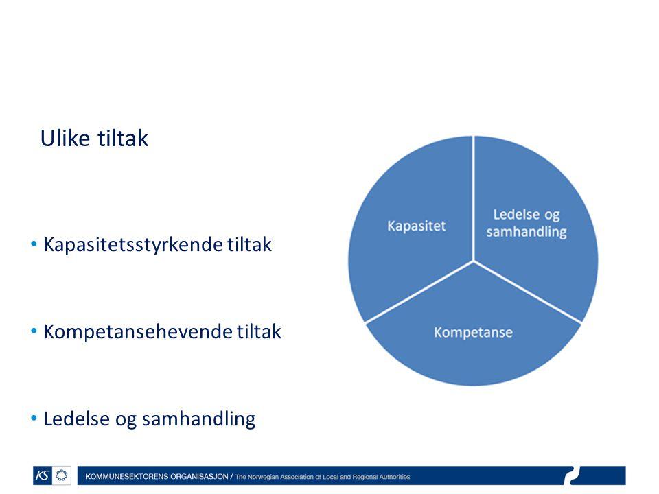 Ulike tiltak • Kapasitetsstyrkende tiltak • Kompetansehevende tiltak • Ledelse og samhandling