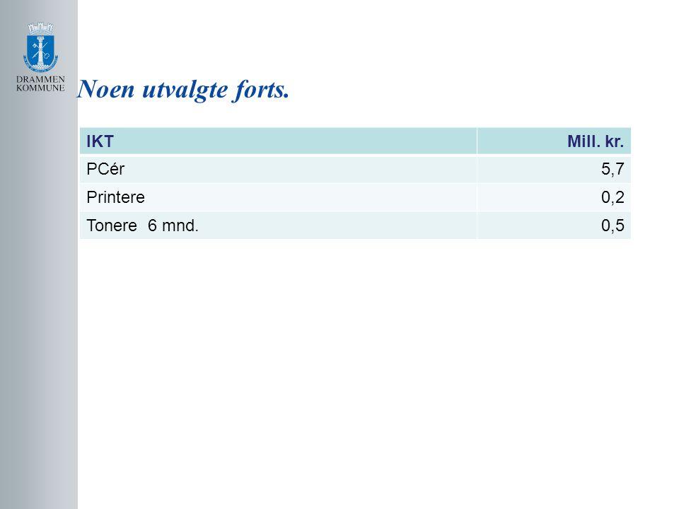 Noen utvalgte forts. IKTMill. kr. PCér5,7 Printere0,2 Tonere 6 mnd.0,5