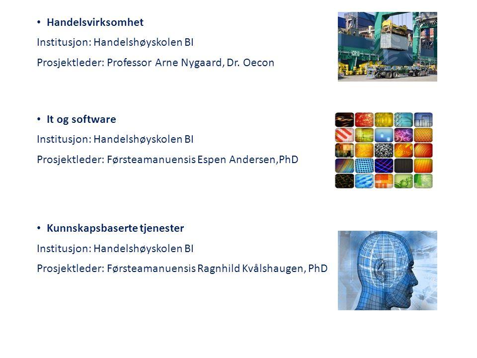 • Handelsvirksomhet Institusjon: Handelshøyskolen BI Prosjektleder: Professor Arne Nygaard, Dr. Oecon • It og software Institusjon: Handelshøyskolen B
