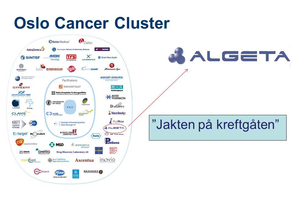 """Oslo Cancer Cluster •""""•"""" """"Jakten på kreftgåten"""""""