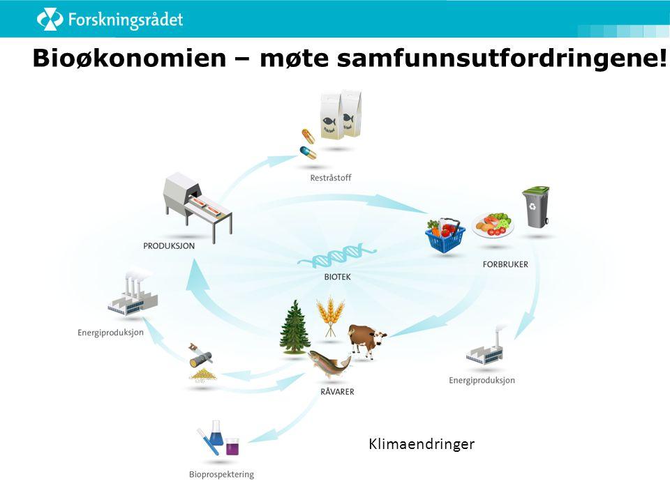Større prosjekter på viktige kompetansefelter  Kommunikasjon/ formidling  Anvendelse  Dynamikk  Tverrfaglighet