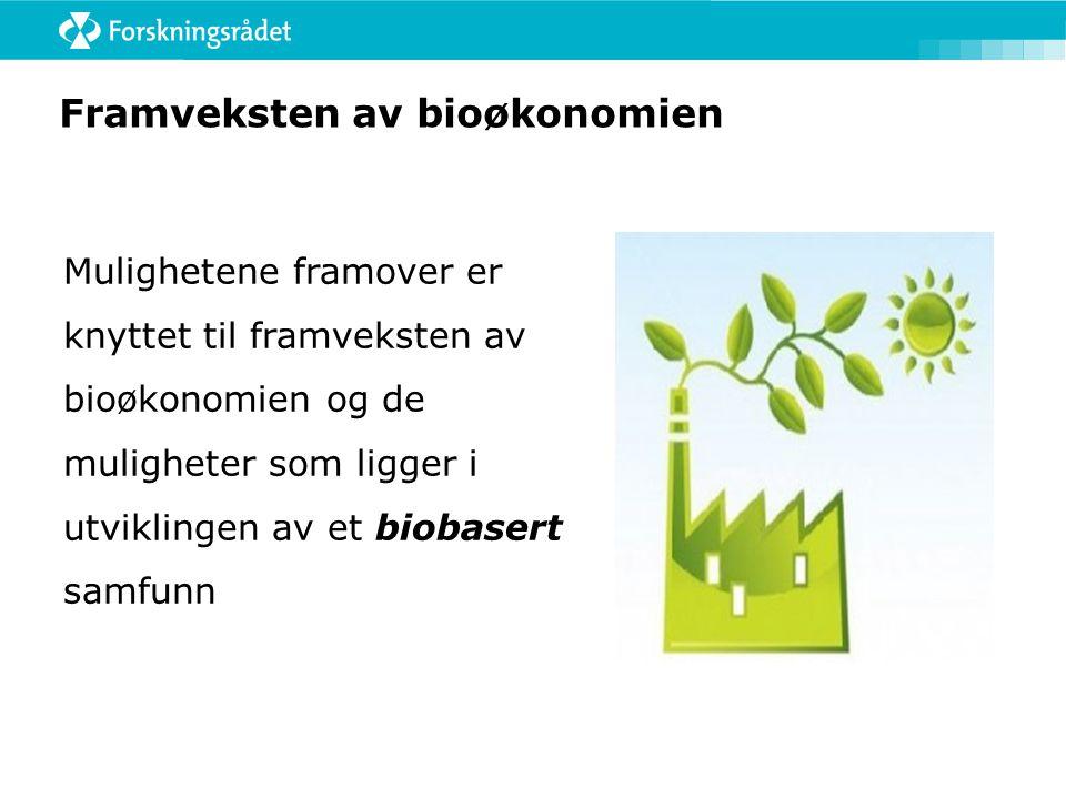Framveksten av bioøkonomien Mulighetene framover er knyttet til framveksten av bioøkonomien og de muligheter som ligger i utviklingen av et biobasert
