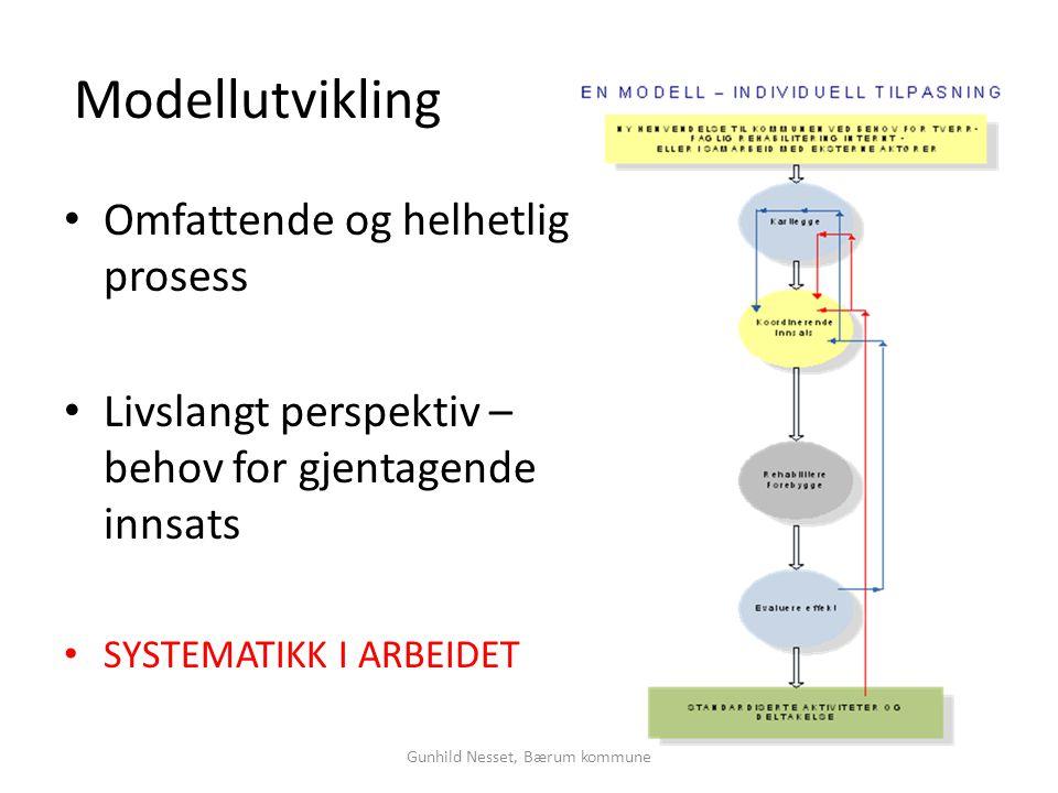 Modellutvikling • Omfattende og helhetlig prosess • Livslangt perspektiv – behov for gjentagende innsats • SYSTEMATIKK I ARBEIDET Gunhild Nesset, Bæru