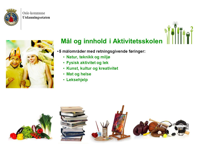 Oslo kommune Utdanningsetaten 18 Mål og innhold i Aktivitetsskolen •5 målområder med retningsgivende føringer: •Natur, teknikk og miljø •Fysisk aktivi