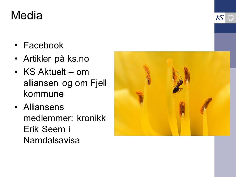 Media •Facebook •Artikler på ks.no •KS Aktuelt – om alliansen og om Fjell kommune •Alliansens medlemmer: kronikk Erik Seem i Namdalsavisa