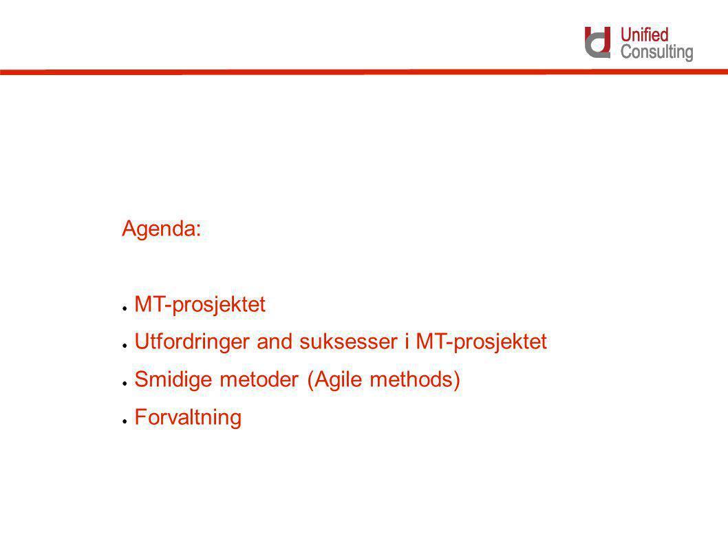 Utfordringer og suksess-faktorer i MT prosjektet