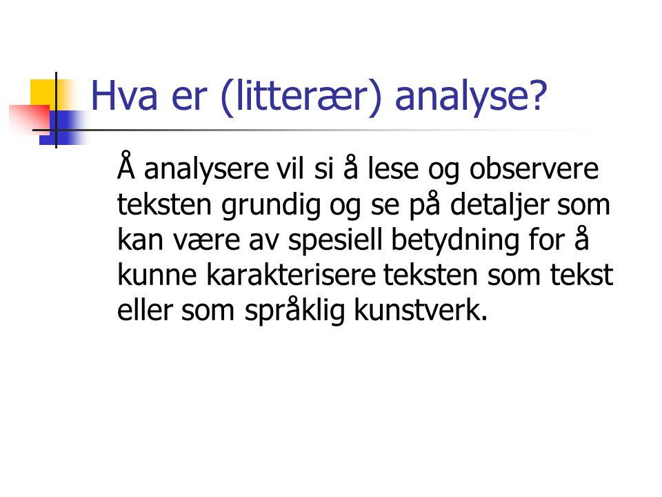 Hva er (litterær) analyse? Å analysere vil si å lese og observere teksten grundig og se på detaljer som kan være av spesiell betydning for å kunne kar