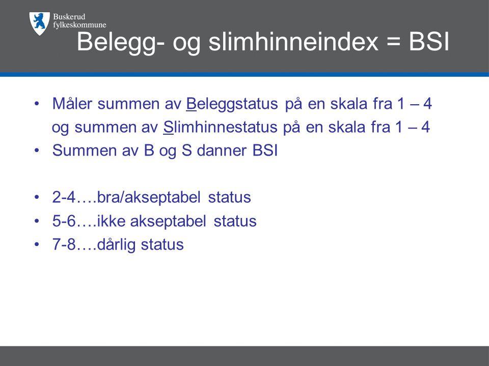 Belegg- og slimhinneindex = BSI •Måler summen av Beleggstatus på en skala fra 1 – 4 og summen av Slimhinnestatus på en skala fra 1 – 4 •Summen av B og S danner BSI •2-4….bra/akseptabel status •5-6….ikke akseptabel status •7-8….dårlig status