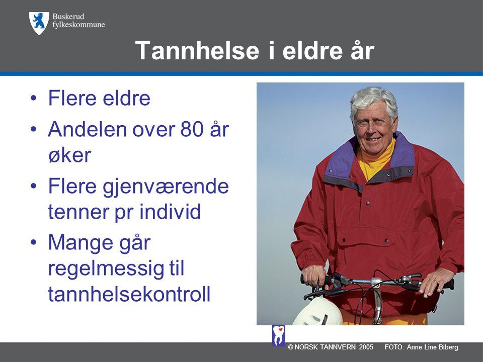 Tannhelse i eldre år •Flere eldre •Andelen over 80 år øker •Flere gjenværende tenner pr individ •Mange går regelmessig til tannhelsekontroll © NORSK TANNVERN 2005FOTO: Anne Line Biberg