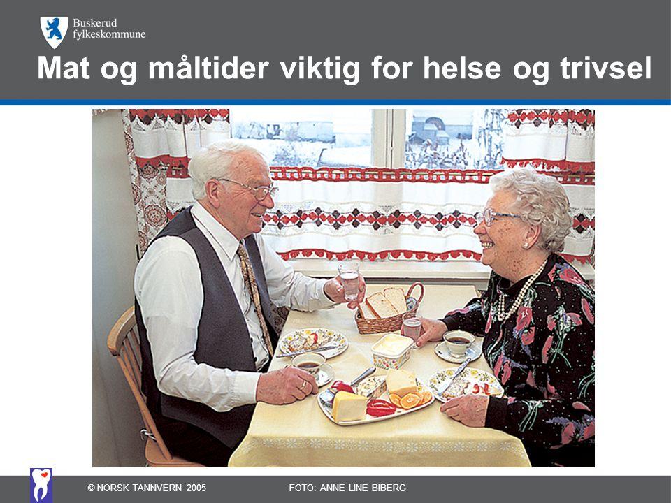 Mat og måltider viktig for helse og trivsel © NORSK TANNVERN 2005FOTO: ANNE LINE BIBERG